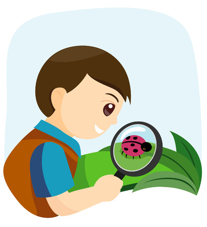 Nature Study Vector