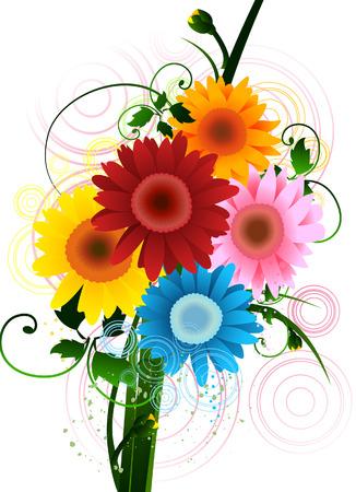gerbera daisy: Gerbera Daisy con saturaci�n camino  Vectores