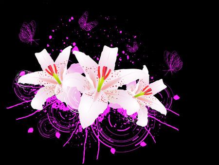 Oriental Lilies Stock Vector - 3448506