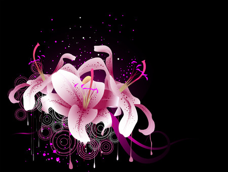 lily vector: Star Gazer Lilies against black background