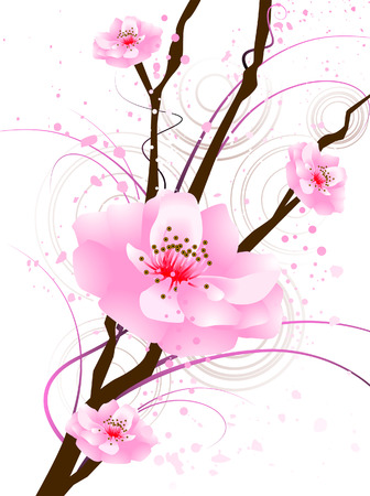 An Illustration of Cherry Blossoms