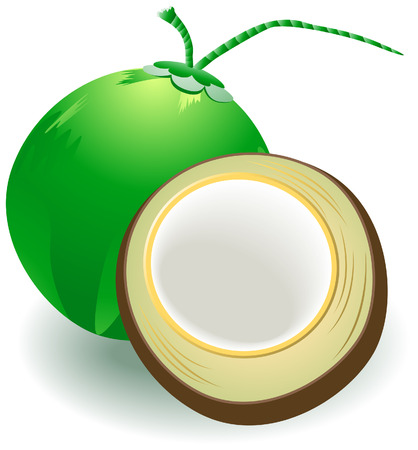 Coconuts Illustration with Clipping Path