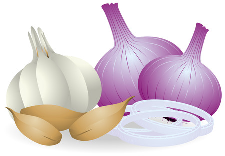 Garlic and Onions with Clipping Path Illustration
