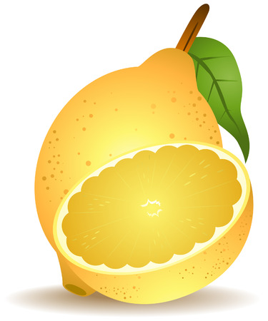Lemon Illustration with Clipping Path Vector