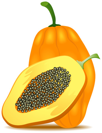 Papaya Illustration with Clipping Path