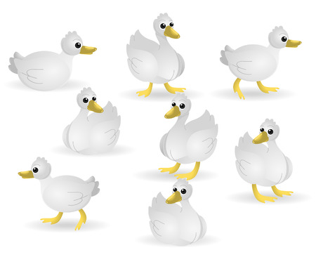Several Ducks with Clipping Path Vector