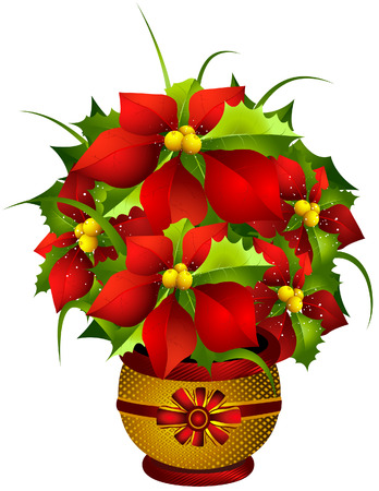 Poinsettia Illustration with Clipping Path Illustration