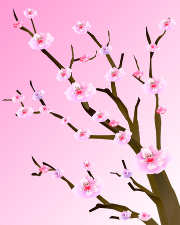Cherry Blossoms Illustration against Pink Background Stock Vector - 4159668