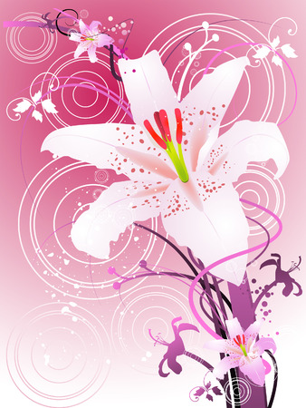 Oriental Lily Illustration with Clipping Path against Pink Background Vector