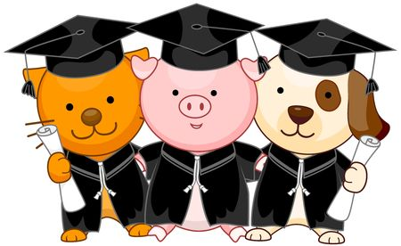 Animal Graduates  photo