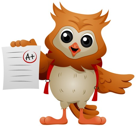 Owl student showing A  grade  Stock Photo - 7004541