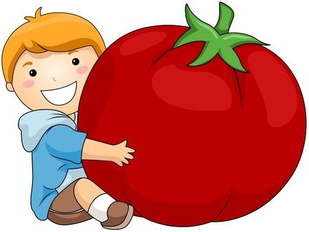 Boy with Tomato Stock Photo - 7004538