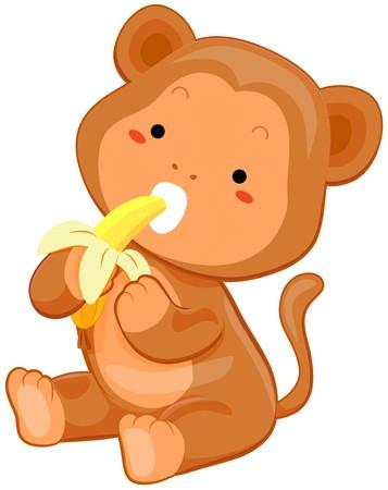 comiendo platano: Cute mono comiendo banana  Foto de archivo