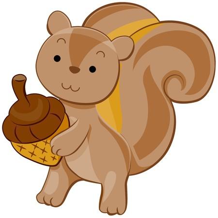 Cute Squirrel photo