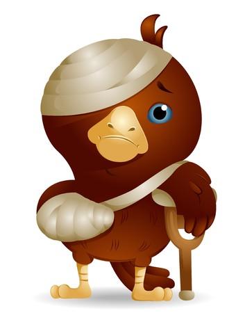 bandages: Injured Bird