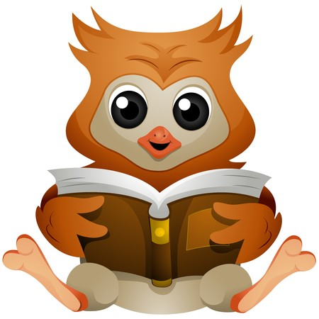 Owl reading Book  photo