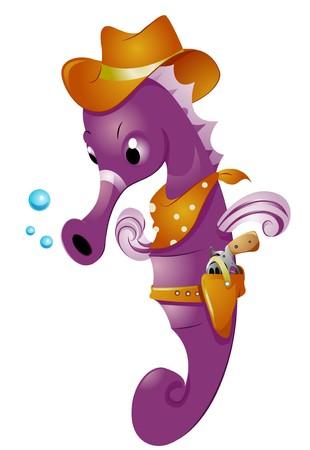 sea horse: Western Sea Horse