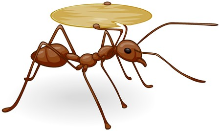 Ant Carrying Empty Tray   Stock Photo