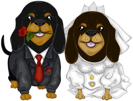 Dachshund Wedding   photo