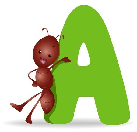 alfabeto con animales: A para Ant  Foto de archivo