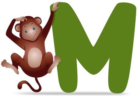 alfabeto con animales: M para Monkey  Foto de archivo