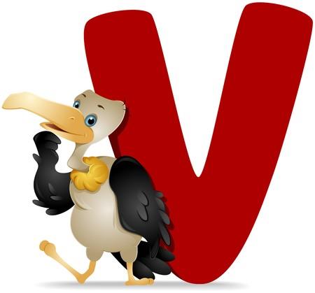alfabeto con animales: V para el buitre  Foto de archivo