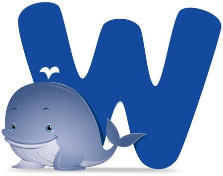 alphabet animaux: W pour baleine