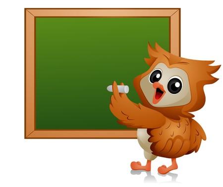 Owl writing on Blackboard  photo