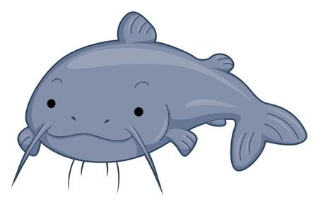 Cute Catfish   Stock Photo - 7764865