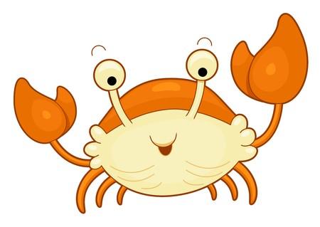 cangrejo caricatura: Cangrejo lindo