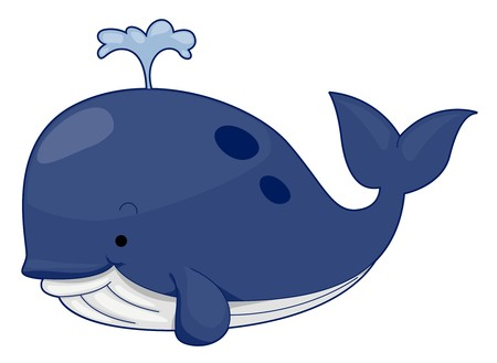 cartoon whale: Cute Whale Stock Photo