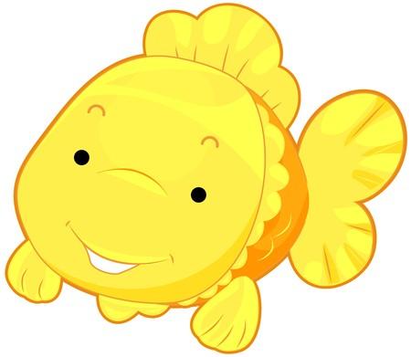 gold fish: Cute Gold Fish