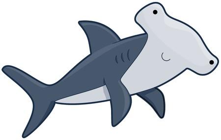 pez martillo: Lindo de HammerHead Shark  Foto de archivo
