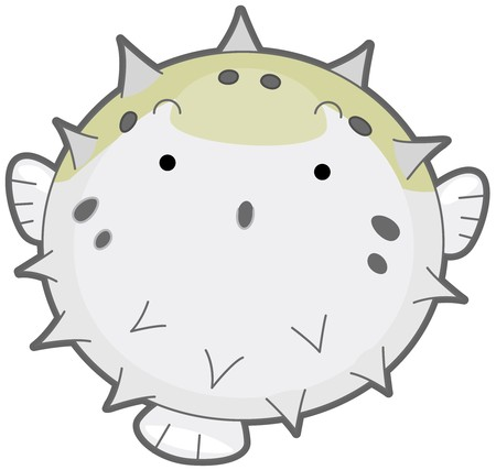 inflated: An Inflated Puffer Fish Isolated against White Background