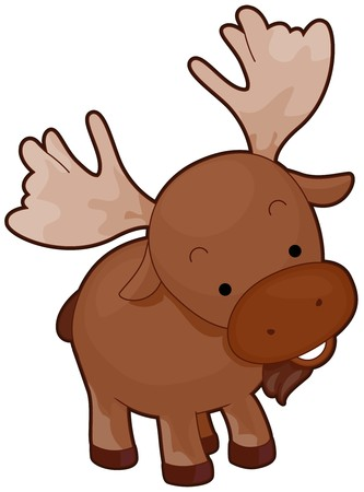 tilted: A Cute Moose With Head Tilted Sideways Isolated against White Background Stock Photo