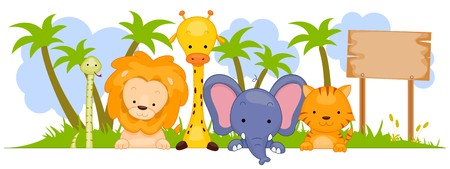 A Group of Wild Animals Against White Background photo