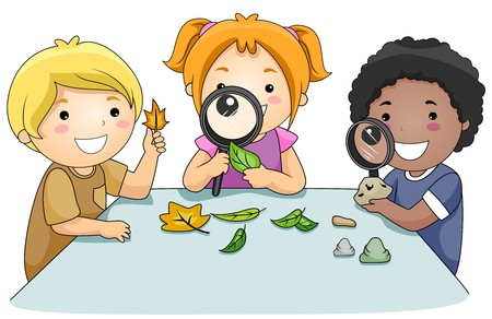 experimento: Un grupo de peque�as de Kids estudiar hojas a trav�s de la copas de ampliaci�n