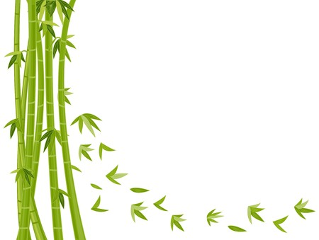 flying leaves: Illustration Featuring a Bamboo Design Against White Background