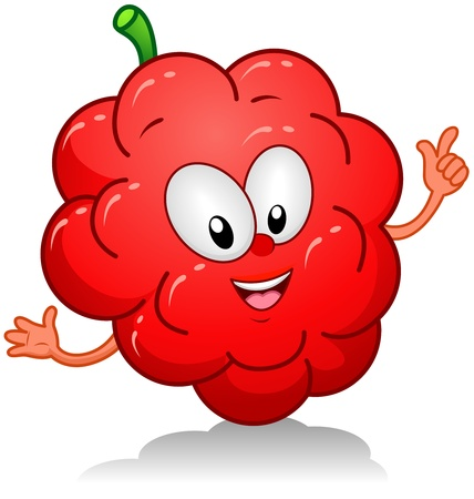 diet cartoon: Illustration of a Raspberry Character Gesturing Something with its Arms