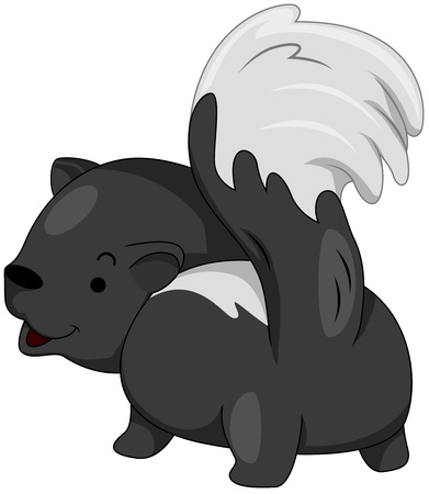 defensive: Illustration of a Skunk Preparing to Release its Infamous Smell