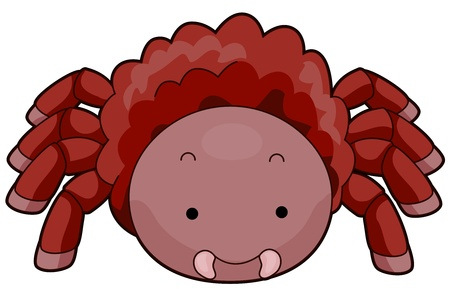 tarantula: Illustration of a Hairy Tarantula with its Fangs Clearly Visible