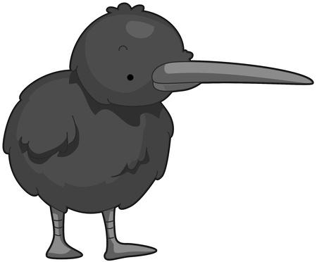 kiwi: Illustration of a Cute Kiwi Searching for Food