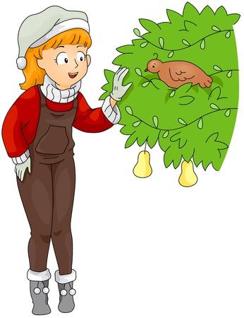 kuropatwa: Ilustracja kobiety wyewidencjonowywanie Partridge w drzewie Pear (1 12)