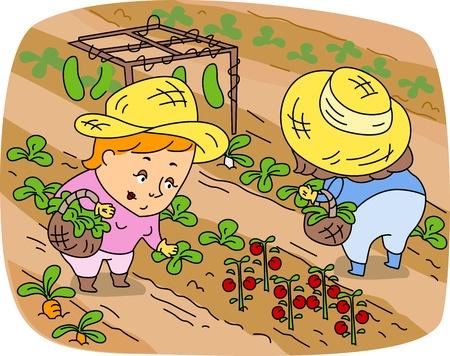 plots: Illustration of Women Picking Vegetables
