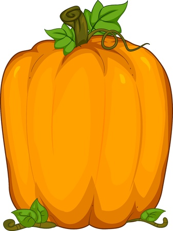 large pumpkin: Background Illustration Featuring a Large Pumpkin