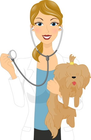 Illustration of a Veterinarian Examining a Dog illustration