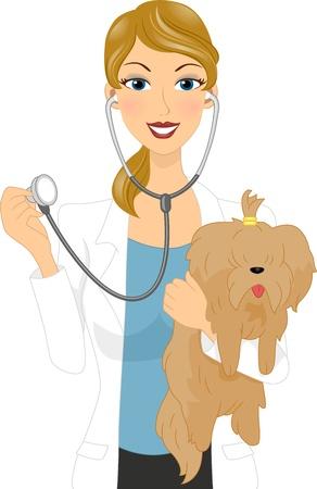 Illustration of a Veterinarian Examining a Dog Stock Photo