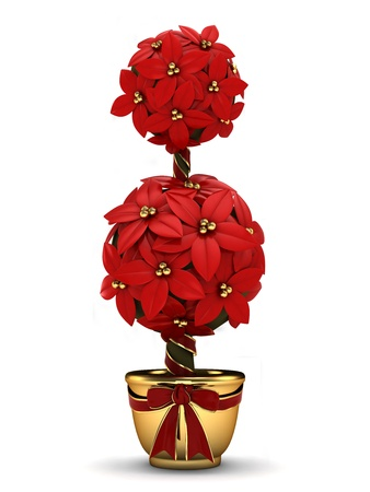 special occasion: 3D Illustration of a Poinsettia in a Pot