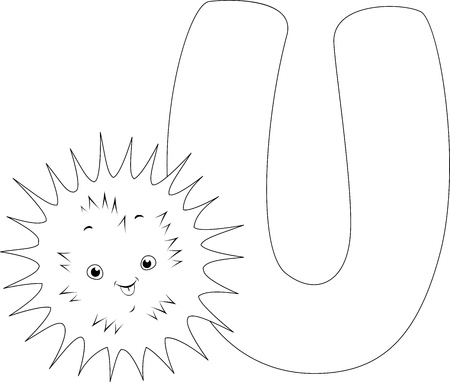 sea urchin: Coloring Page Illustration Featuring an Urchin