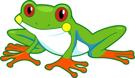 tree frogs: Illustration of a Rainforest Frog